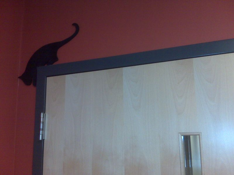 Catonofficedoor